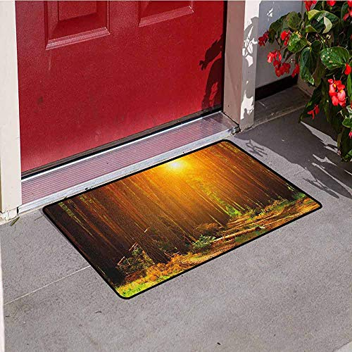 GloriaJohnson Landscape Commercial Grade Entrance mat Sunset Dawn Sun Rise Beams in Forest Tree Nature Plants Print Image for entrances garages patios W19.7 x L31.5 Inch Earth Yellow Dark Orange ()
