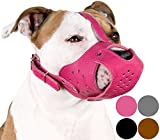 CollarDirect Dog Muzzle PitBull AmStaff Basket Genuine Leather Staffordshire Terrier (Pink)