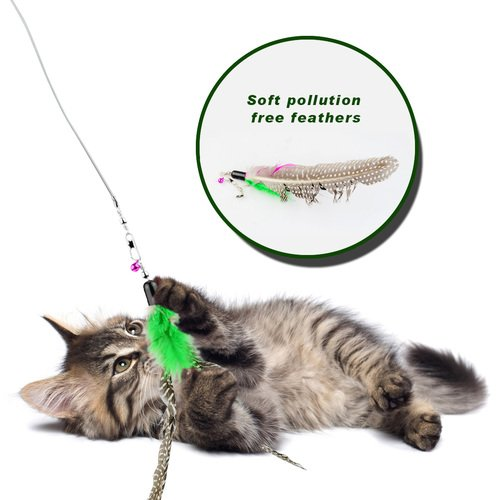 Make Cat Toy With Fishing Wire
