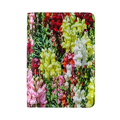 Passport Cover Case Snapdragon Red Vintage Flower Leather&microfiber Multi Purpose Print Passport Holder Travel Wallet For Women&Men 5.51x3.94In