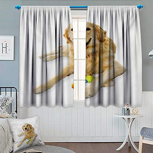 Anhounine Golden Retriever,Blackout Curtain,Pet Dog Laying Down with Toy Friendly Domestic Puppy Playful Companion,Waterproof Window Curtain,Multicolor,W55 x L45 inch