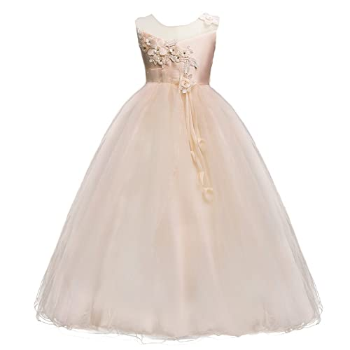 Kids Big Girls Bridesmaid Tulle Lace Dress School Girls Elegant Communion Ball Gown Dance Pageant Birthday