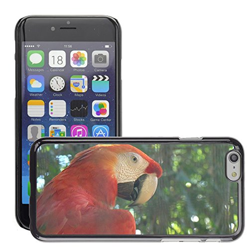 Just Phone Cover Hard plastica indietro Case Custodie Cover pelle protettiva Per // M00138994 Nature Arara Oiseau animal Forêt Rouge // Apple iPhone 6 6S 6G PLUS 5.5""