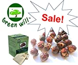 organic soap nuts - 0.75 Pounds Greenwill Organic Soapberry / Soap Nut (12 Ounces, ~188 Loads) with 1 Wash Bag -- Use Real Soapberry from Greenwill