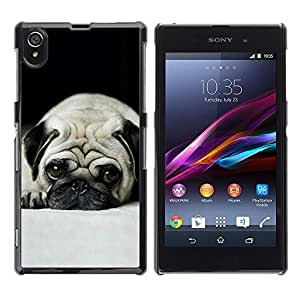 Caucho caso de Shell duro de la cubierta de accesorios de protección BY RAYDREAMMM - Sony Xperia Z1 L39 C6902 C6903 C6906 C6916 C6943 - Pug Dog Small Shorthair Big Brown Eyes