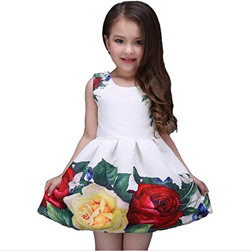Samgami Baby Summer Girl Dress White Clothing Rose Flower Princess Wedding Party Lace Clothes (Tag100/2-3Y, White)