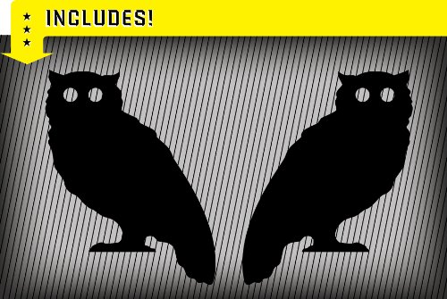 Molding Mates Owls 2 Molding Mates Home Decor Peel and Stick Vinyl Wall Decal Stickers A-OD-OWL