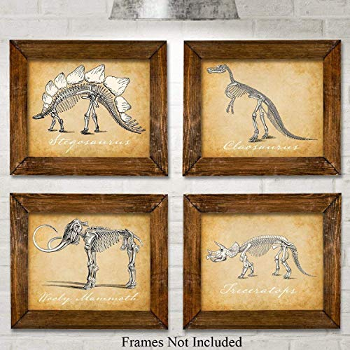 Original Dinosaurs Art Prints - Set of Four Photos (8x10) Unframed - Makes a Great Gift Under $20 for Boy