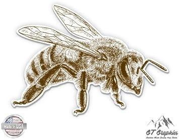 Watercolor Bee Car Bumper Sticker Decal 5/'/' x 4/'/'