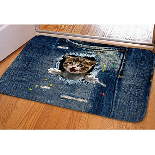 Cute Kitty Welcome Mat For Indoor Bedroom Dorm Dollhouse Floral Funny Cat Door Mat Fast Dry Absorbent Hot Tub Bathroom Small Carpet Easy Clean Dirt Trapper Kitchen Hallway Floor Mat Entrance Doormat (Mat Door Dollhouse)