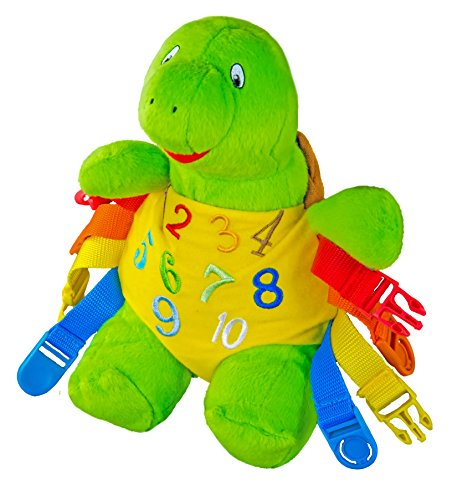 BUCKLE TOY Bucky Turtle - Toddler Early Learning Basic Life Skills Children's Plush Travel Activity