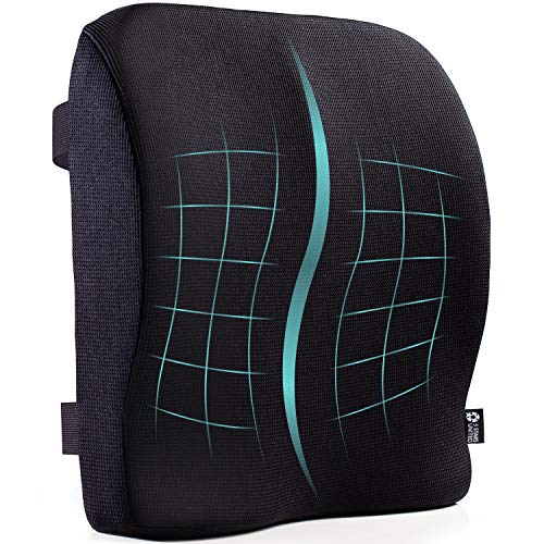List of the Top 10 computer chair back support pillow you can buy in 2020