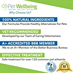 Pet Wellbeing - Milk Thistle for Cats - Natural Support for Feline Liver Health - 2oz (59ml) 16