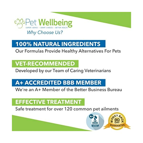 Pet Wellbeing - Milk Thistle for Cats - Natural Support for Feline Liver Health - 2oz (59ml) 7