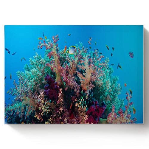 Arts Language Paint by Number Acrylic Kits for Adults Kids DIY Oil Paintings Canvas Framed Wall Art Decor for Livingroom Bedroom-Coral Reef and Tropical Fish in The Deep Sea 16x20in