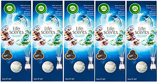 Airwick Life Scents Reed Diffusers (5 Pack) Turquoise Oasis - Air Wick