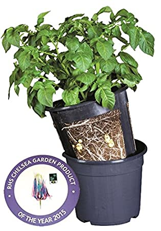 Potato Grow Pots Patio Growing Grow Potatoes Easily Pack Of 3   Chelsea  Flower Show Product
