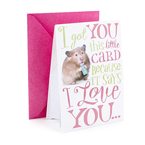 Hallmark Funny Pop Up Mother's Day Card (I Love You in a Big Way)