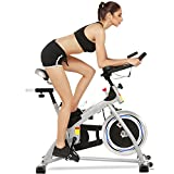 Anfan Fitness Bike Removable Exercise Bike Fitness Bike Wheel Bike with Adjustable Seat Cushion and LCD Screen Fitness Equipment Machine for Home (US STOCK) (Silver) Anfan