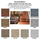 BASIS 8''x24'' Dog Assist Carpet Stair Treads - Premium 40 Oz. Tufted Pinpoint Saxony NYLON by Milliken - Set of 13 w/ 1 Roll Carpet Tape ((g) CANVAS - Set of 13)