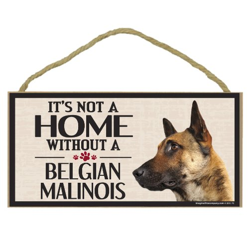 Imagine This Wood Sign for Belgian Malinois Dog Breeds