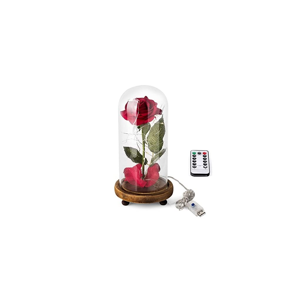 """""""Beauty and the Beast"""" Rose Kit, Red Silk Rose and Led Light with Fallen Petals in Glass Dome on Wooden Base for Home Decor Holiday Party Wedding Anniversary"""