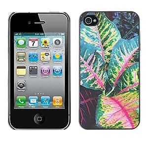 For Apple iPhone 4 / iPhone 4S / 4S Case , Leaves Tree Green Red Stripes - Diseño Patrón Teléfono Caso Cubierta Case Bumper Duro Protección Case Cover Funda