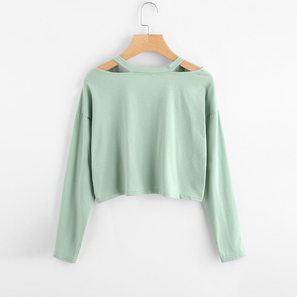 HHei/_K Womens Casual Long Sleeve Sweatshirt Causal Rose Embroidery Cropped Tops