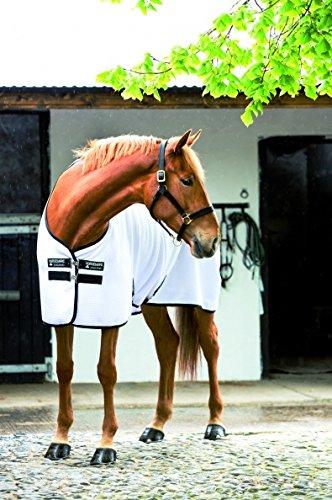 horse cooler 87 - 2