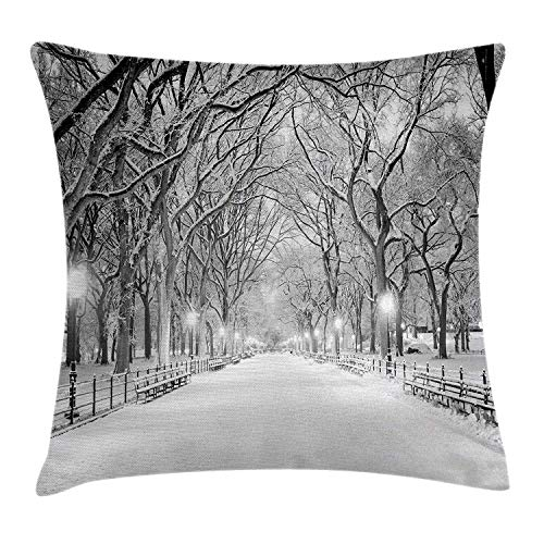 Winter Decor Throw Pillow Cushion Cover by, View of Central Park in Winter Snowy Trees and The Walkway Digital Print, Decorative Square Accent Pillow Case, 18 X18 Inches, Black and -