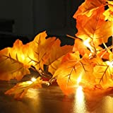GABOSS 4 Pack Thanksgiving Decorations Lighted Fall