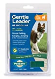 Gentle Leader Quick Release Head Collar, Medium, Green, My Pet Supplies
