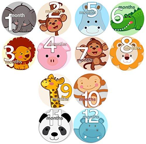 ANIMALS FACES 2 Baby Boy Girl Monthly Onesie Stickers Baby Month Onesie Stickers Baby Shower Gift Photo Shower Stickers, safari jungle monkey hippo cat dog lion tiger zebra