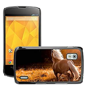 Hot Style Cell Phone PC Hard Case Cover // M00047170 horses animals // LG NEXUS 4