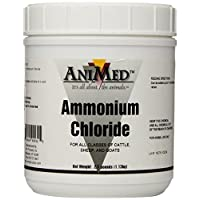 AniMed Powder 99.9 por ciento de cloruro de amonio para caballos, perros, gatos, vacas, ovejas y cabras, 2.5 libras