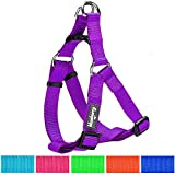 Blueberry Pet Step-in Harnesses, Chest Girth 15.5