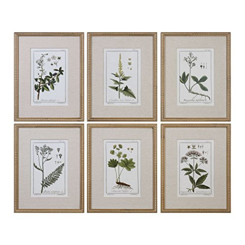 6-Pc Green Floral Botanical Study Prints Wall Art Set - botanical wall art sets