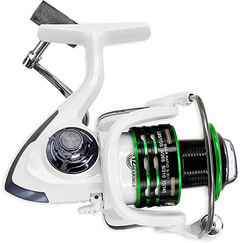 Thekuai Spinning Fishing Reel for Freshwater Saltwater 12 + 1 Ball Bearings Left/Right Interchangeable Collapsible Metal Handle Fishing Reels (HC6000)