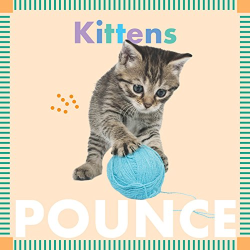 Kittens Pounce (Amicus Ink Board Books)