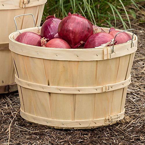 Old-Time Poplar Half Bushel Baskets (Pack of 2)