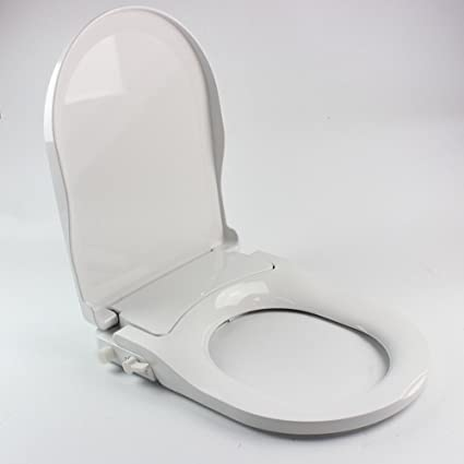 Pleasant Non Electric Bidet Toilet Seat Self Cleaning Dual Nozzles D Shape Elongated Bidet Toilet Seat Attachment T Adapter White Us Shipping Ibusinesslaw Wood Chair Design Ideas Ibusinesslaworg