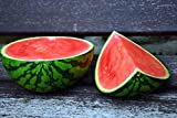buy Crimson Sweet Watermelon Seeds now, new 2018-2017 bestseller, review and Photo, best price $3.99