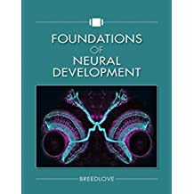 Foundations of Neural Development