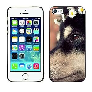 Paccase / SLIM PC / Aliminium Casa Carcasa Funda Case Cover - German Shepherd Dog Puppy Flowers - Apple Iphone 5 / 5S