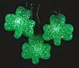 Northlight  Luck of The Irish St Patrick's Day Shamrock Christmas Lights Green Wire, Set of 10