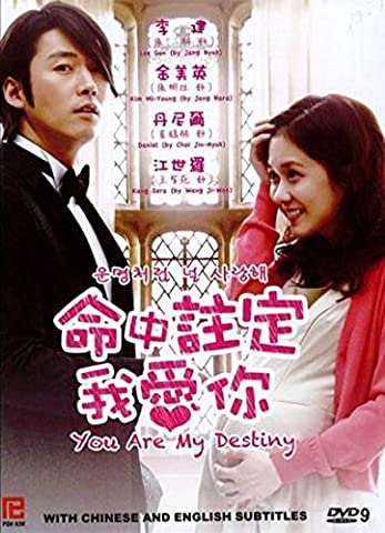 You Are My Destiny / Fated to Love You (Korean Drama, English Subtitles) (Drama DVDs & Videos)