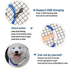 SaponinTree-LED-Collar-de-Perro-de-Mascota-Collar-de-Perro-de-Seguridad-LED-Intermitente-con-USB-Bateria-3-Modos-de-LED-Perro-Collar-Brillantes-y-Longitud-Ajustable-para-Perros-75CM-Azul