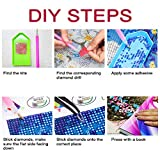 DIY 5D Diamond Painting by Number Kit,Crystal