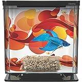 Hagen Marina Betta Aquarium Starter Kit, Sun Swirl