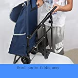 With chairs climbing stairs folding shopping cart